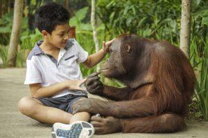 family trip elephant park lombok