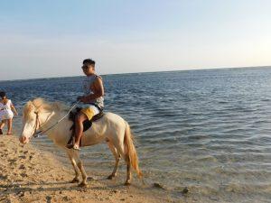 berkuda di Gili Trawangan
