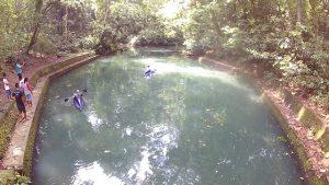danau buatan hutan suranadi