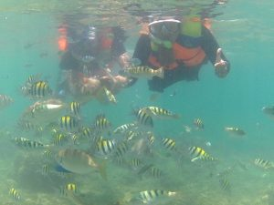 one day tour gili nanggu