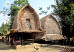 573_traveling lombok_desa ende lombok