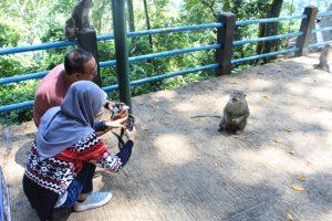 hutan pusuk lombok utara