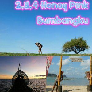 paket bulan madu lombok 3D2N pink bumbangku 3 gili