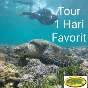 Paket Tour Lombok 1 Hari Favorit