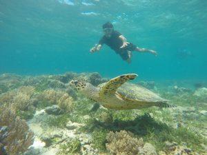 wisata di lombok barat yang mempesona